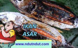 Makanan Kuliner Ikan Asar | Kuliner Khas Maluku
